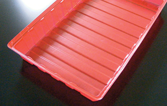 Seed Tray with Transparent Lid